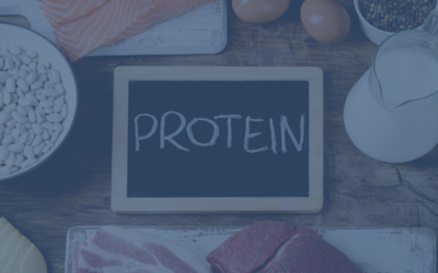 Why is protein key for weight loss?