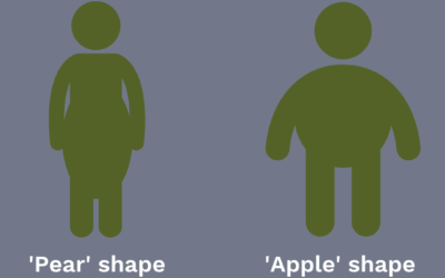 What does the Waist-to-Hip Ratio tell you about your health?